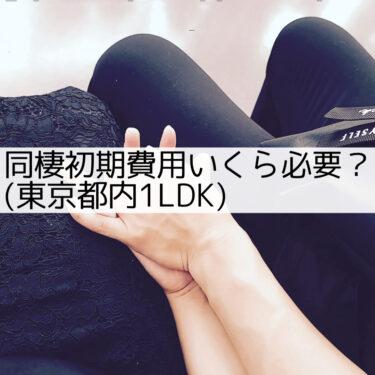 【同棲初期費用どれくらい必要?】同棲初期費用公開!東京都内1LDK